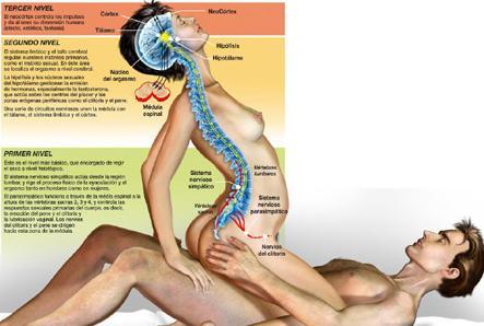 relajante masaje tantra sexo